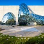 Salvador Dali Museum (The Dali Museum)