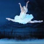 The Texas Ballet Theater