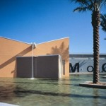 Museum of Contemporary Art, North Miami (MOCA)
