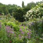A Visit to Monet's Garden, Jenna Louden Collection